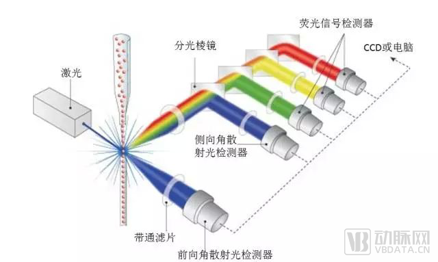 流式技术原理.png